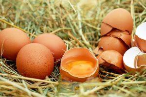 Eggs 1510449 640 300x200